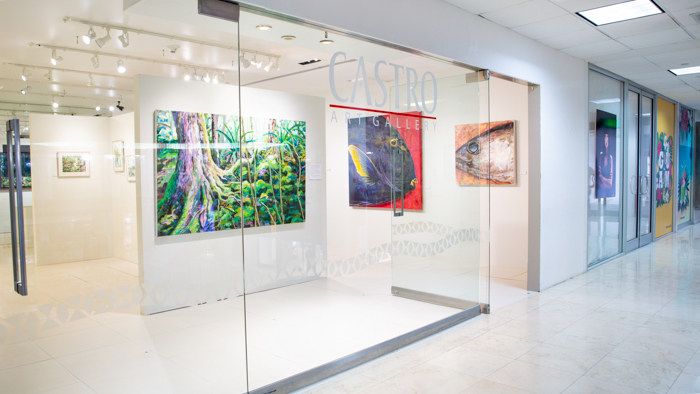 Castro Gallery